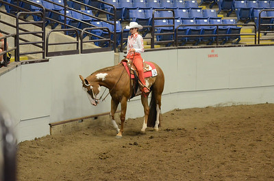 WESTERN PLEASURE 15 & OVER QUARTER TYPE OVER 56 CALL BACK