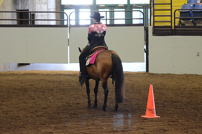 HORSEMANSHIP ALL AGES PONIES PATTERNS