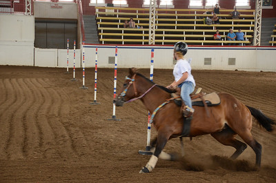 POLE BENDING 13 & 14 HORSES OVER 56