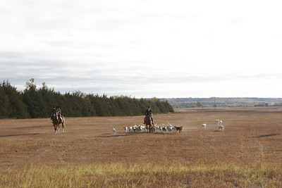 NHH Burwell Hunt 10-5-2012 001