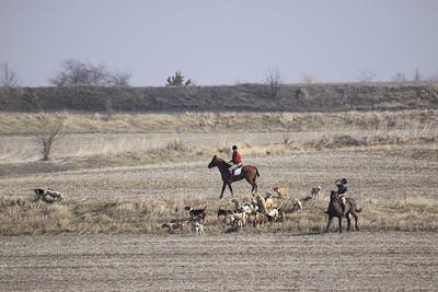 NHH Cumberland Hunt  4-3-2011 030