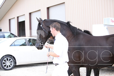 Candids and Carriage Demo