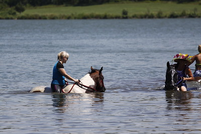 Swimming with Horses 8-1-2011 026