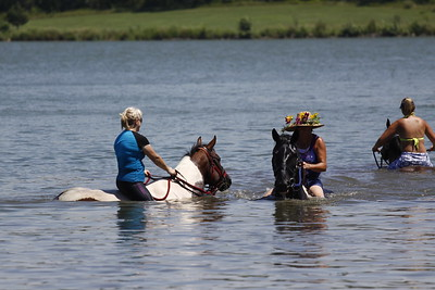 Swimming with Horses 8-1-2011 027