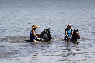 Swimming with Horses 8-1-2011 008