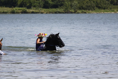 Swimming with Horses 8-1-2011 023