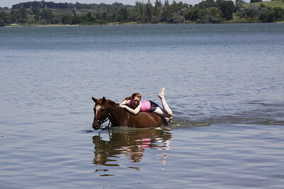 Swimming with Horses 8-1-2011 010