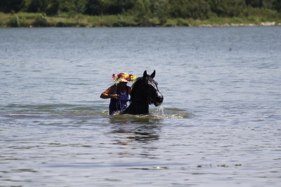 Swimming with Horses 8-1-2011 024