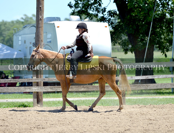 4H Event 30 - Gaited Pleasure