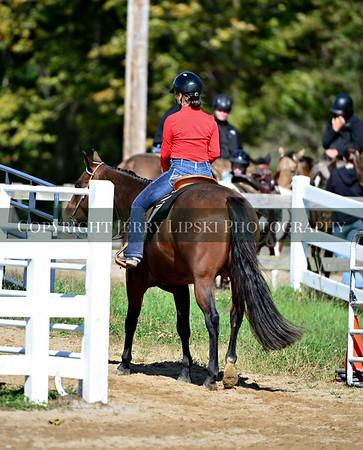 Events 15, 16, 17, 18    Horsemanship WT / WTC