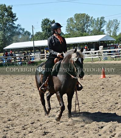Events 17 & 18 - Horsemanship WTC