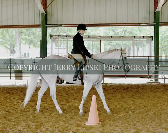 June 27th - Open Pleasure  Horse Show
