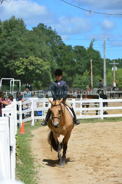 13 thru 14  -  English Pony and PeeWee