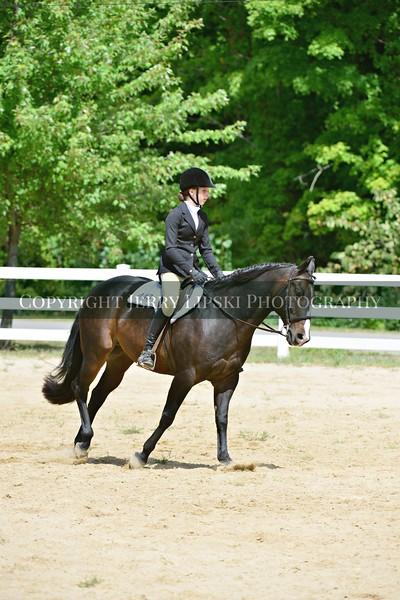 21 thru 24  -  English Equitation