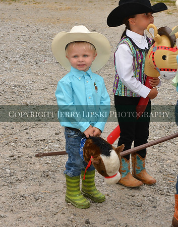 2016 Lake County Fair -Western Horse Show