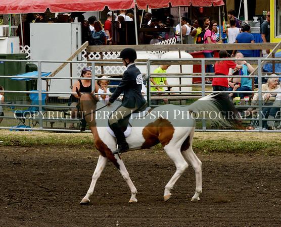 Event 59 Sunday - Color Horse Pleasure