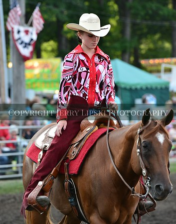 Friday Aug20 2014 - Pleasure Horse