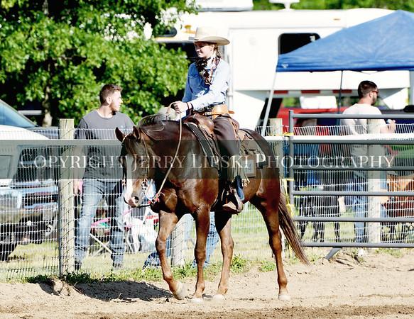 Class 25 ....  Ranch Horse Pleasure