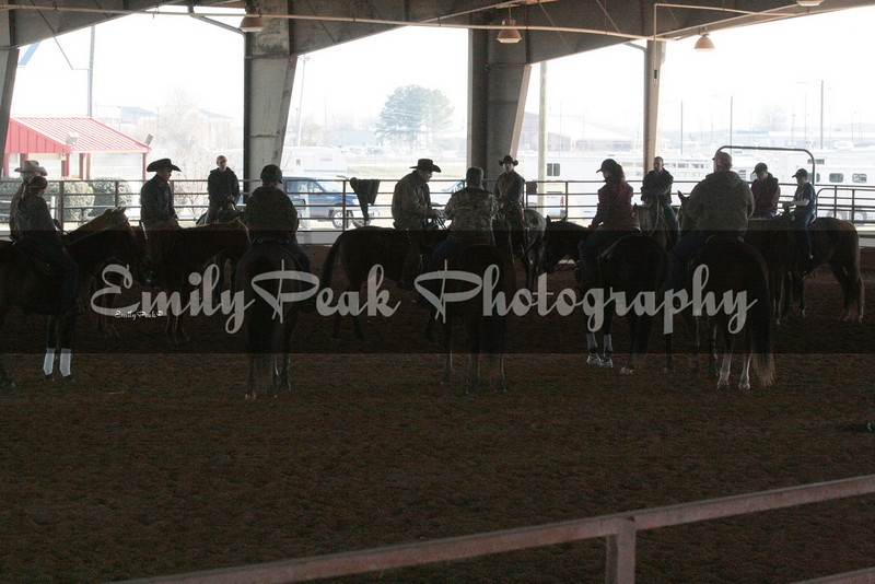 B.F.Yeates American Stock Horse Association Clinic Brian Sumrall
