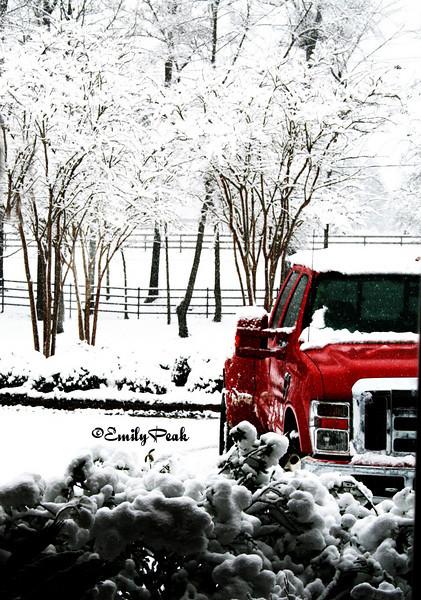 Snow at Reunion Farm