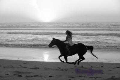 beach_D3R5528BW