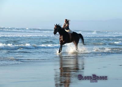 beach_D3R5267
