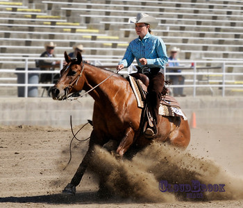 favorite Equestrian and Ranch Shots