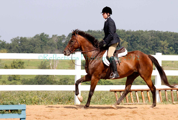 RIDGEVIEW STABLES 2012 SHOW PART TWO