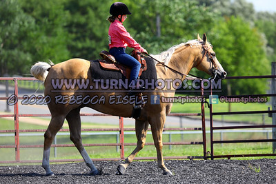 Walk Equitation July26-4