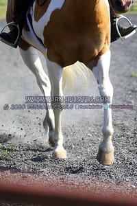 SR rider pleasure- (4)