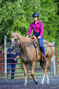 Walk equitation 8-16- 15