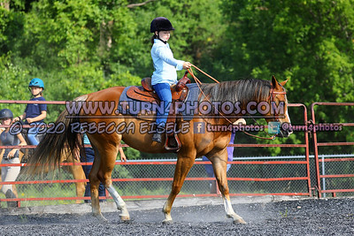 Walk equitation 8-16- 1