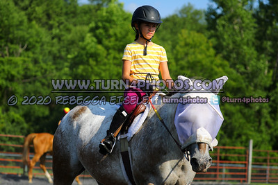 Walk trot equitation 8-16- 3