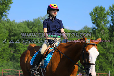 Walk trot equitation 8-16- 9