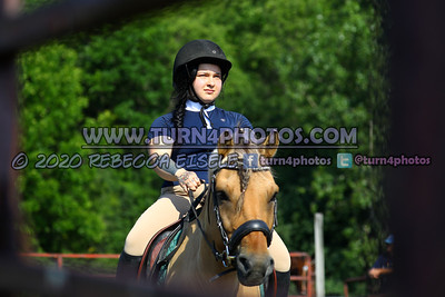 Walk trot equitation 8-16- 13