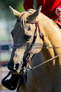 JR rider pleasure Sept12-_-16