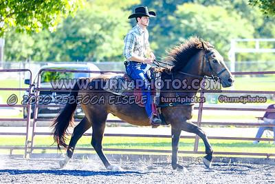 Sr ranch Rail Sept12-_-14