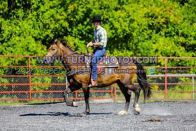 Sr ranch Rail Sept12-_-8