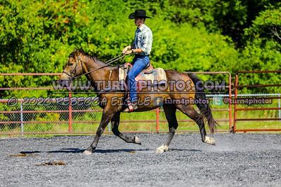 Sr ranch Rail Sept12-_-7