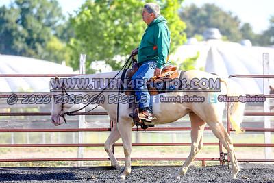 Sr rider equitation Sept12-_-24