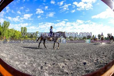 Walk only equitation Sept12-_-17