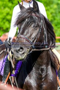 Walktrot equitation Sept12-_-12