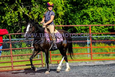 Walktrot equitation Sept12-_-19