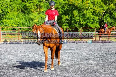 Walktrot equitation Sept12-_-15