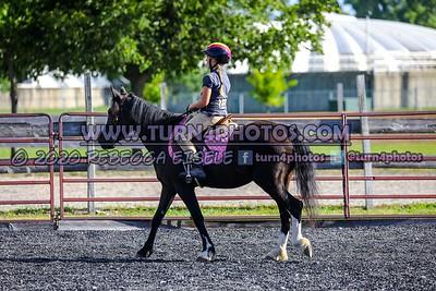 Walktrot equitation Sept12-_-14