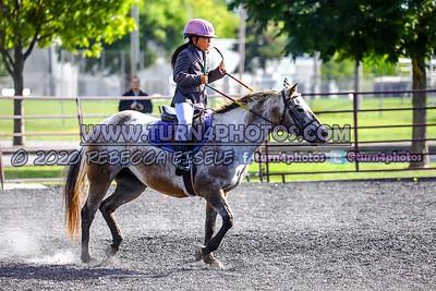 Walktrot equitation Sept12-_-13