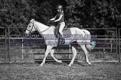 Walktrot equitation Sept12-_-17
