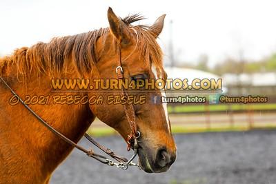 SR Rider Equitation May8-_-20