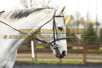 Walk Trot Equitation May8-_-10