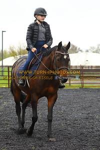 Walk Trot Equitation May8-_-12